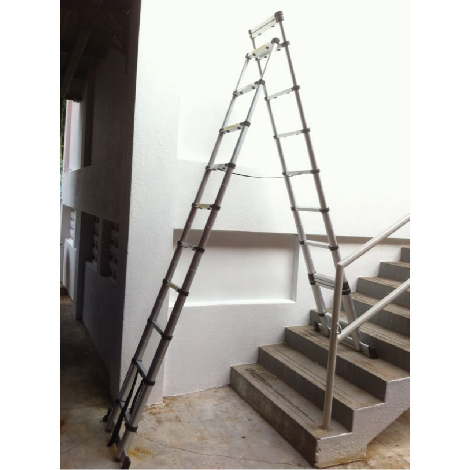 10+2 Steps   Reach 4.6m   Tele ProSteps Telescopic Ladder